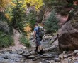 Kanarra Creek, bei Kanarraville, Utah