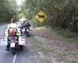 Ankunft in Tikal