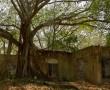 Ruinen von Armero Viejo