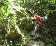 Klettern im tropischen Wald
