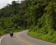 Durch Regenwälder